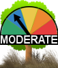 Based upon today's weather there is a Moderate Fire Danger (restrictions may apply)